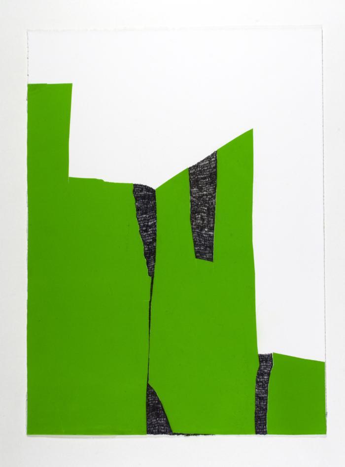 Claudia Sbrissa, Green Form 2