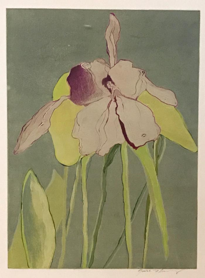 Gail Flenery, Orchid