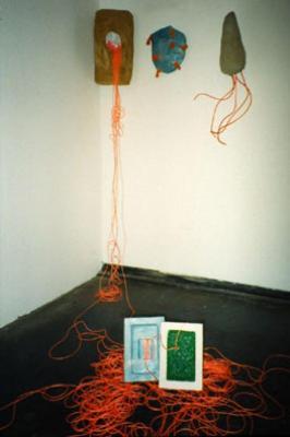 Hildegarde Skowasch, Paper Installation