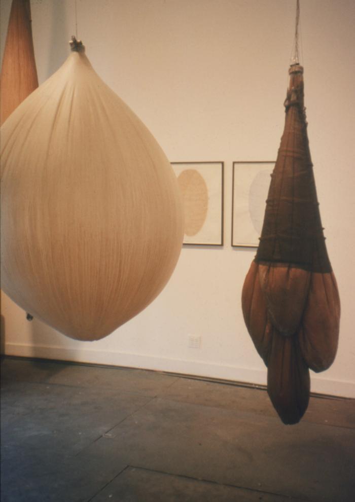 Lillian Maurer, Installation
