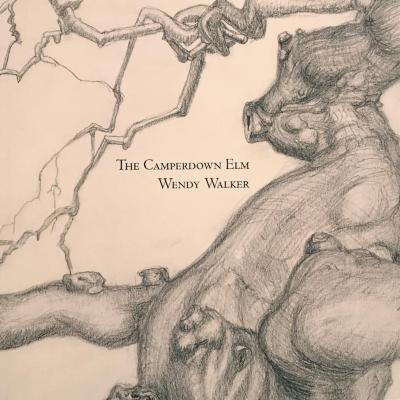 Book Launch: Wendy Walker, The Camperdown Elm