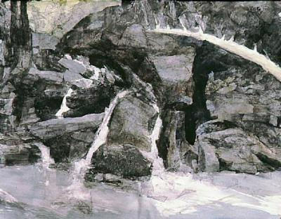 Mariella Bisson, Saunderskill with Fallen Log