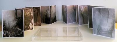 Maddy Rosenberg, Frozen Eiffel, 2 digitally printed accordion artist's books in custom plexiglas box, 2019 (open)