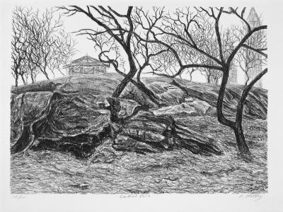 Ron Netsky, Central Park