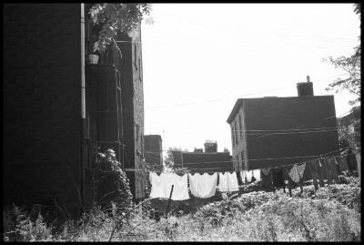 Janet Neuhauser, Summer Laundry, 1990