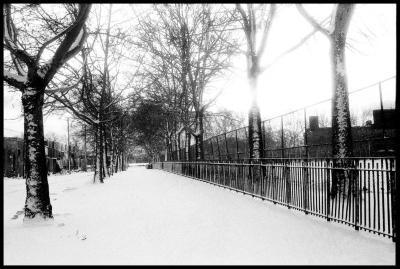 Janet Neuhauser, Snow, Red Hook Fields, 1984